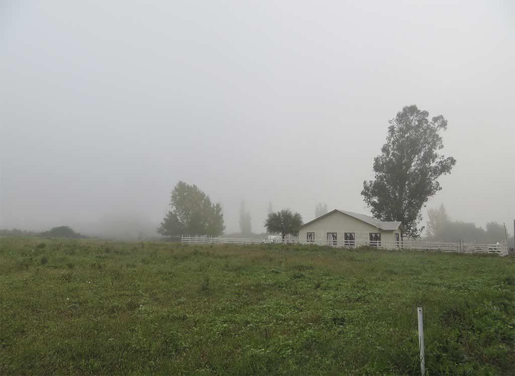 BAC_Casa Rural Curico