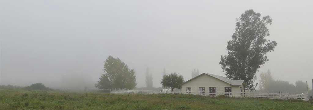 Chile: Conociendo la Casa Rural Curicó y primeros días en Santiago
