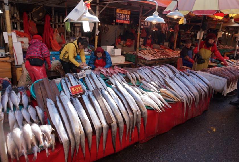 buscando-a-cochet-busan-2-mercado-jagalchi